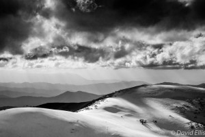 The Track to Mt Feathertop
