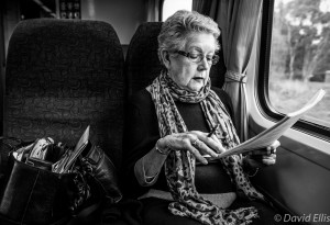 Lady on the Train