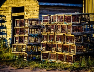 Golden Lobster Pots, Naufrage, Prince Edward Island