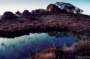 Pond at Dawn Mt Buffalo